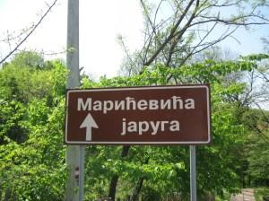 MARIĆEVIĆA JARUGA